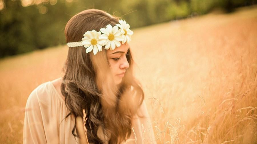 Большие цветы ромашки для фотосессии