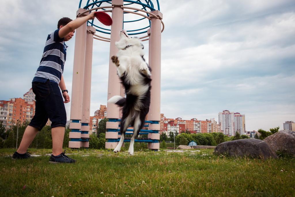 Фотосессии с животными